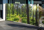 Sichtschutz Fotodruck Wald