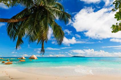 Balkonsichtschutz-Fotodruck Karibik